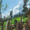 Kashmir HutPMD8584