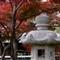 Fort Worth Botanic & Japanese Garden