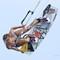 Annabel van Westerop Kitesurfing in Aruba by Tony Filson of KissMyKite