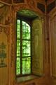 ivy over the windowpane
