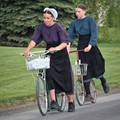 Amish Kick Scooter Bikes