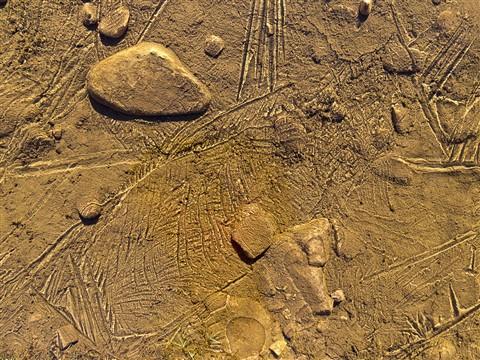 Bowland ice puddles (3)