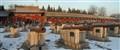 Beijing - Forbidden City cannons
