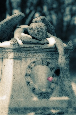 Calvary Cemetery, in Saint Louis, Missouri, USA - heavily processed weeping angel monument with rose