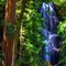Berry Creek Falls Big Basin