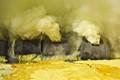 Sulfer smoke