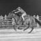 BARREL RACER AT CIRCLE S RANCH, MYAKKA FLORIDA USA - Copy