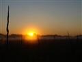 When the sun rises