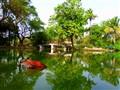 CHASM-E Pond