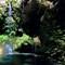 Natural Falls 1