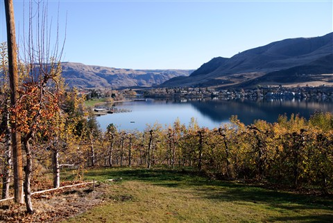 Orchards over Chelan