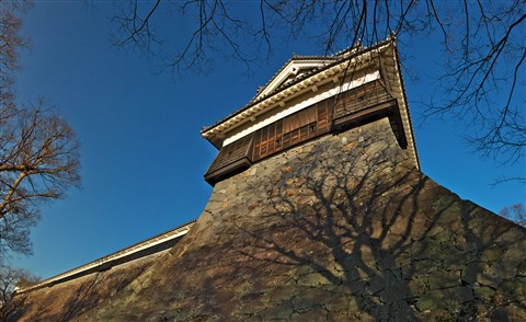 KumamotoCastle under winter shining130111_1624