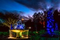 Atlanta Botanical Gardens Light Display, Atlanta, GA