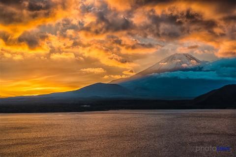 Golden Fuji.