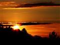 Domestic Sunset