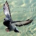 Landing Alert