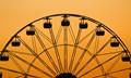 Wheel Fun