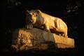 Lion Shrine (PSU)
