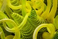 Detail of a large work by Chihuly.