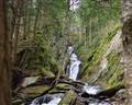 Tannery Falls, Savoy Ma