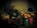 Flower Seller, Oakland, CA