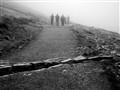 Misty trek