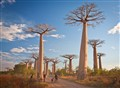 Baobab&Bicycle