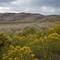 P1170567 copyenhanced: 9/12/17 Great Sand Dunes NP...un mask,levels,shadows,sat...