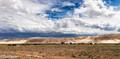 Gobi Desert-Mongolia (3)