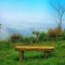 The Lone Stone Bench