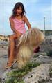 Roko as a horse