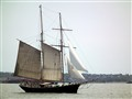 Sailing Ship in NY Waters
