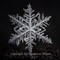Snowflake 2015 008 1200