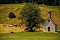Pastoral sanctuary