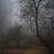 Mist Ia