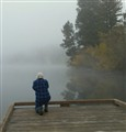 taking picture's of fog