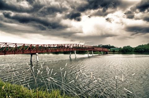 Bridge NE park