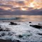 Fern Glen Sunset: La Jolla, CA