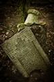Dervish Cemetery