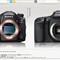 Sony FF A99 vs Canon APS-C 7D