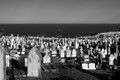 Waverley Cemetery, Waverley, (Sydney) NSW. Australia. Steep hillside cemetery all the way down to the sea. A magnificent location barely 7kms from the centre of Sydney.