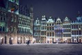 brussels in the snow