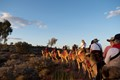 Australian Camel Tour