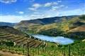 Alto Douro Vinhateiro - Portugal