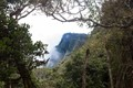 View from a sri lankan jungle trail