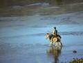 Donkey Rider crossing the Peneios River
