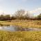 Westcott wasteland
