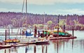 Eagle Harbor