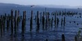 Astoria Oregon Lost Piers