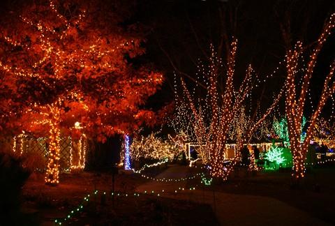 Boise-Bot-Gard-Lights-3